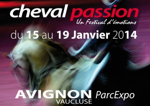 http://www.newestern.fr/wp-content/uploads/2013/07/Visuel-300x211.jpg