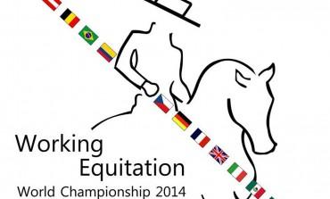 Bientôt les Championnats du monde d'équitation de travail en Autriche