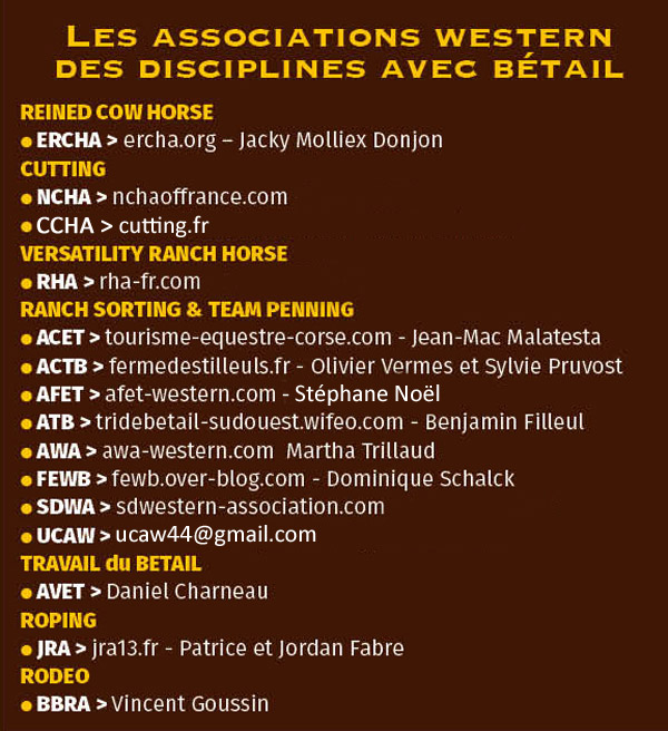 Listing-betail-2019