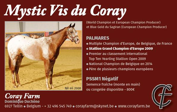 Mystic-Vis-du-Coray