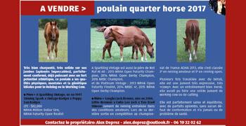 PA-Poulain-new-42