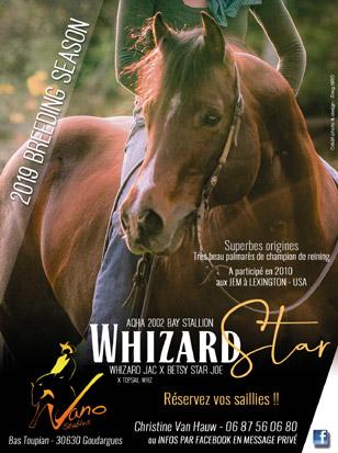 whizard-2019-web