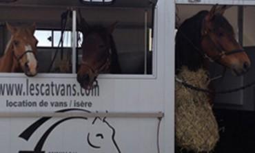 Une solution pour la mobilité de vos chevaux en Rhône-Alpes
