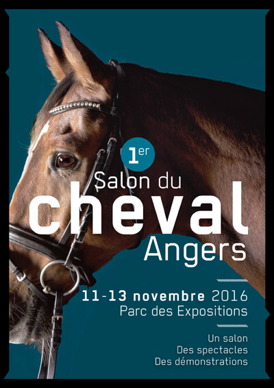 Angers2016in