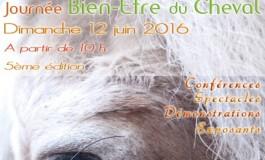 Tous les amis des chevaux ont rendez-vous à Strasbourg le 12 juin 2016