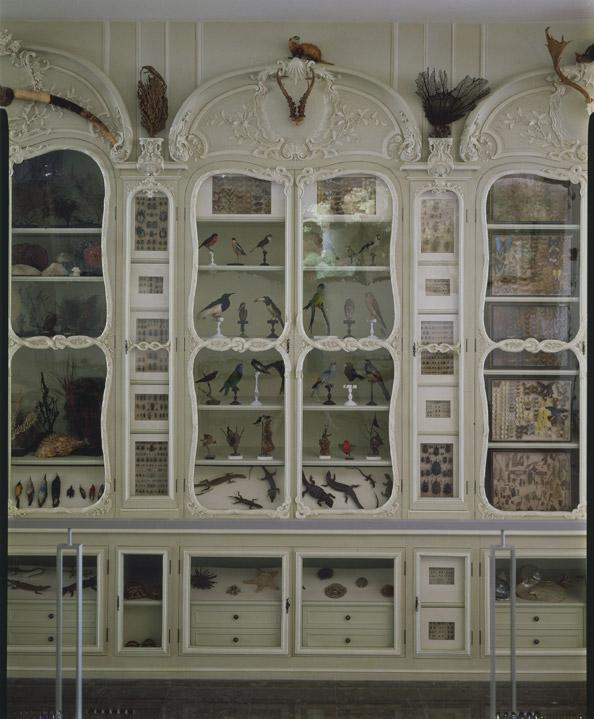 Cabinet Bonnier de la Mosson © M.N.H.N - Bibliothèque centrale