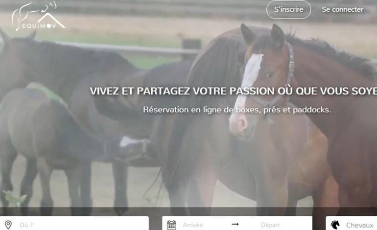 Héberger le cheval en mobilité : la solution apportée par Equimov se distingue