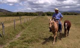 Ne manquez pas les soirées équitation western sur Equidia Life