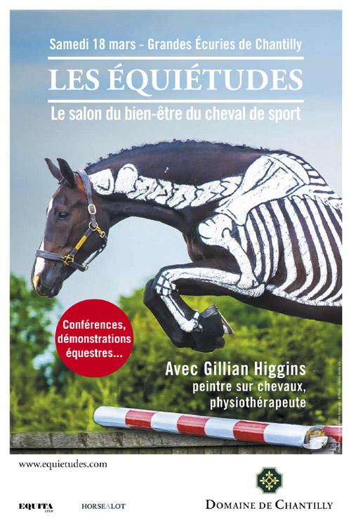 Gillian higgins la femme qui peignait sur les chevaux bient t chantilly newestern - Salon du cheval montpellier ...