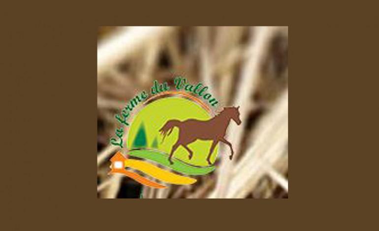 19 février 2017 en Meuse, journée ranch à la ferme du Vallon