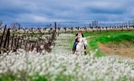 Chevauchez avec Julie à travers les terroirs buissonniers du sud