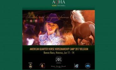 L'art et la manière du Horsemanship, sujet d'un stage en Belgique