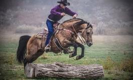 Adamo Walti vous détaille l'Extreme Cowboy Race