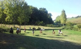 Travailler votre cheval en harmonie dans le Tarn, deux rendez-vous à noter… mais pas seulement