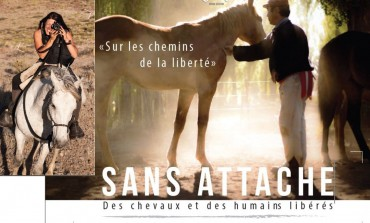 Un film pour changer le regard de tous sur le cheval… en quête d'un dernier coup de pouce financier