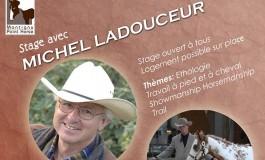 Michel Ladouceur vous attend à Montigny Paint Horse (28) les 14 et 15 octobre 2017, ne manquez pas cette occasion
