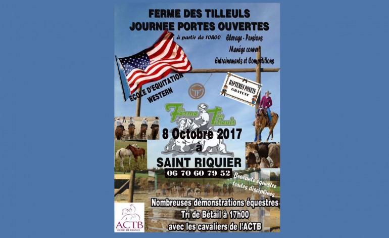 La Ferme des Tilleuls (Somme) lance son poney-club le 4 octobre et ouvre ses portes le 8 octobre 2017