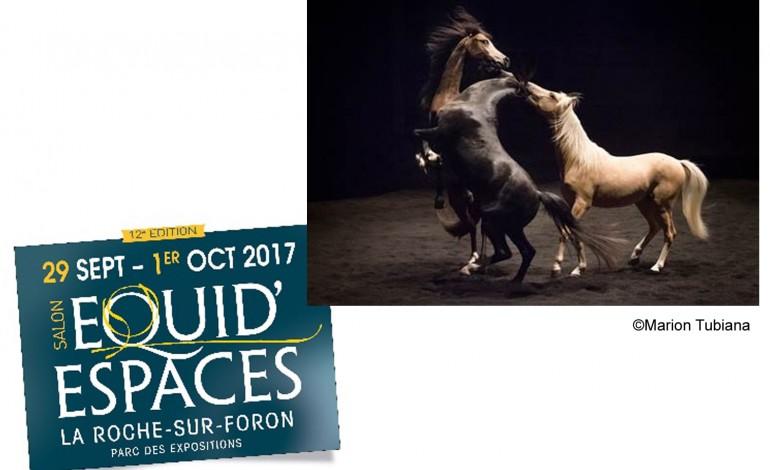 L'album photos du Théâtre équestre Zingaro à Equid Espaces 2017
