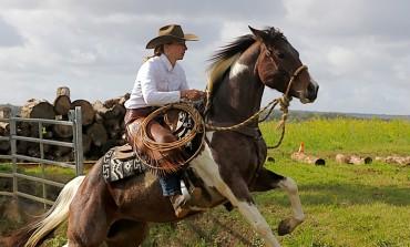 Vent d'Est en poupe aux finales 2017 de Versatile Ranch Horse by RHA au Double V Farm (18) – Les résultats et les photos…