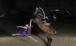 A Equita Lyon, le Cadre noir entre dans la danse