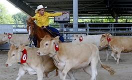 Scoop : l'UCAW organise en France le championnat d'Europe 2018 des disciplines de tri de bétail western