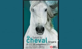 L'équitation western à l'honneur au Salon du Cheval d'Angers