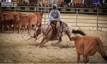 L'Equitation Western au Salon du Cheval de Paris : analyse d'une détermination