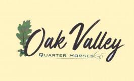 Oak Valley Quarter Horses à Valeille : l'union fait la force…