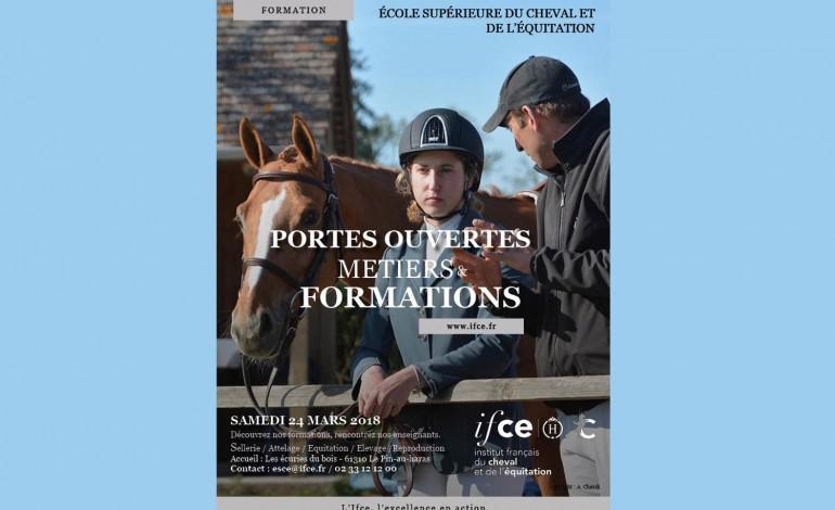 Pour en savoir plus sur les métiers du cheval…