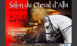 Albi fêtera le cheval début avril 2018