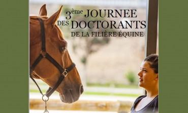 Le cheval inspire les chercheurs !