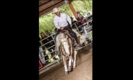 Reining : Roux Spring Slide à Entraigues (84)