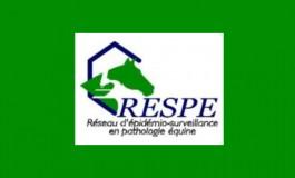 Herpèsvirose : point officiel récent et préconisations