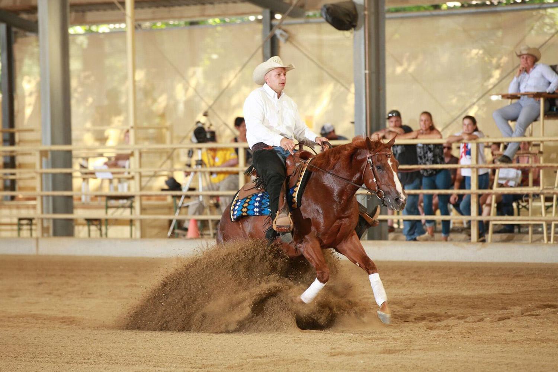 © Austrian Reining Horse Association