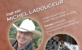 Les prochains rendez-vous de Montigny Paint Horse