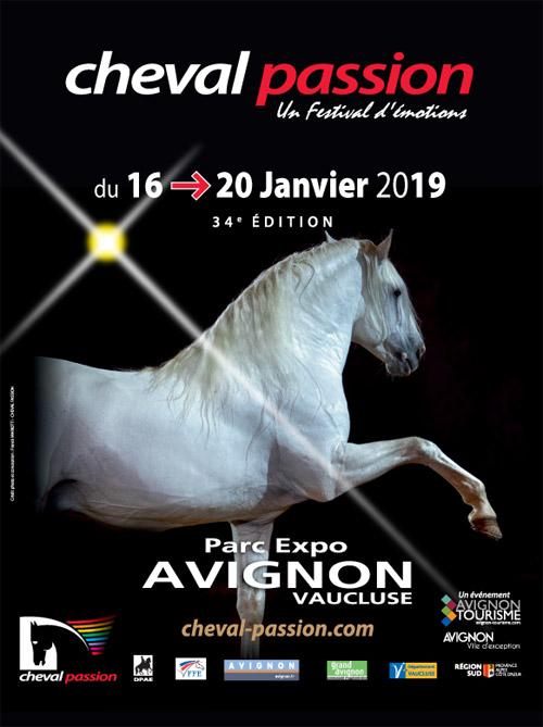 Avignon-19-web