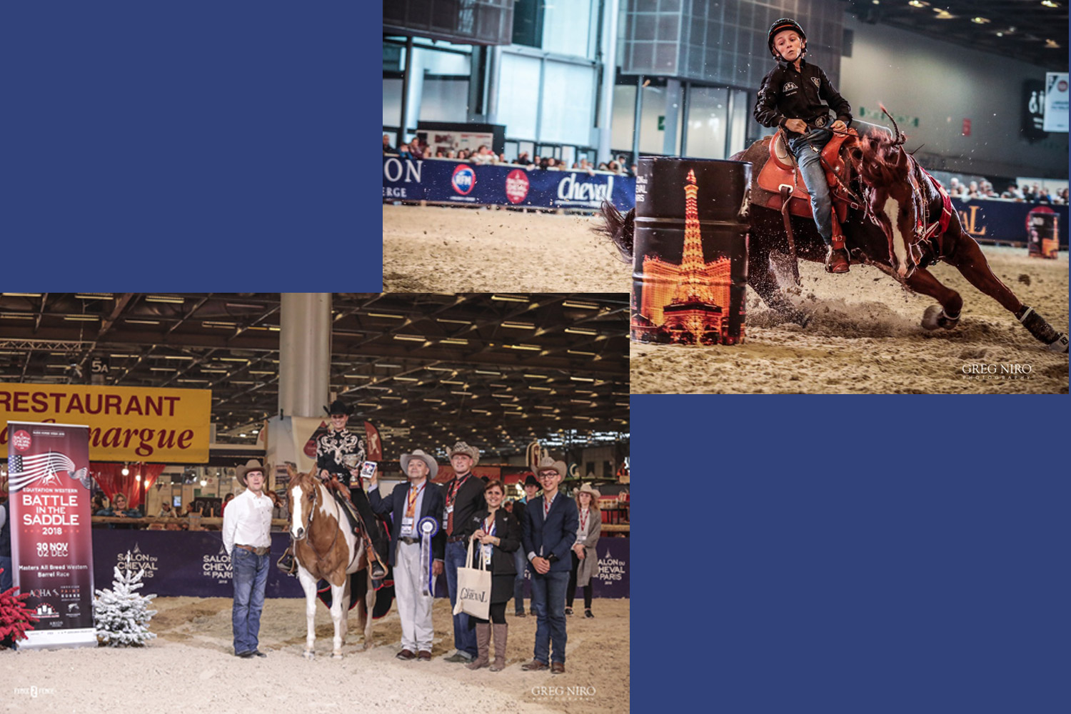 Salon Cheval de Paris (30 novembre / 2 décembre 2018) - Master All Breed & Championnat BBR : les gagnants… ©Grégory Niro