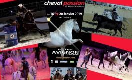 Avignon (84) donne rendez-vous à toutes les passions équestres dès le 16 janvier 2019