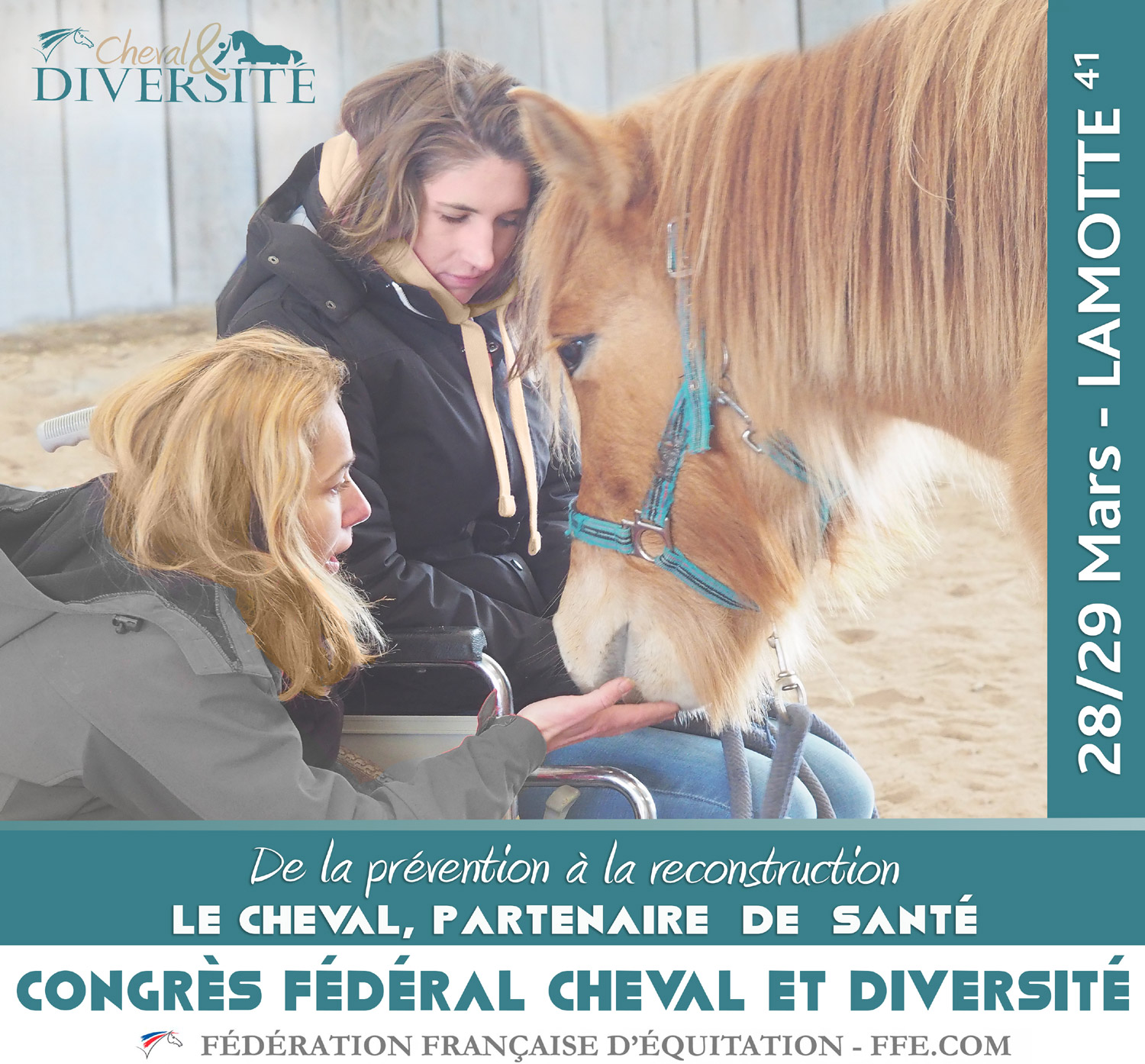 FFE-Cheval-et-Diversite-in