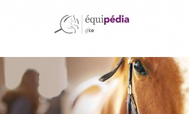 Equipédia, votre encyclopédie du cheval à portée de clic
