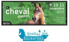 Angers, capitale du Grand Ouest équin et cavalier