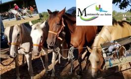 Pour le Far West, prenez la direction de Montmerle sur Saône (01) !