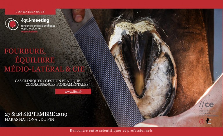 Maréchaux-ferrants et spécialistes du pied équin à vos agendas