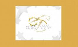 Des Français brillent au derby européen de reining