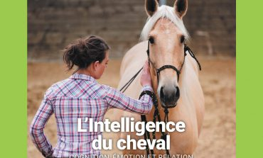 L'intelligence du cheval : on en parle à La Cense