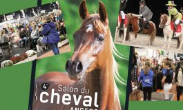 RV du 6 au 8 novembre 2020 à Angers (49)