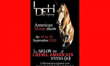 Le cheval US fait salon à Uzès (Gard)