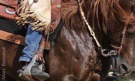Centres équestres et covid-19, vers des avancées concrètes