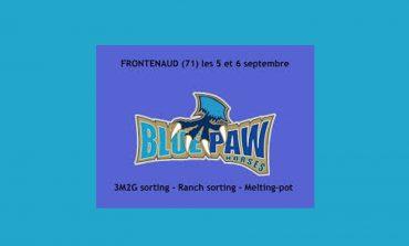 Concours AFET à Frontenaud (71) les 5 et 6 septembre 2020