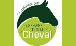 Un salon du cheval en visio !